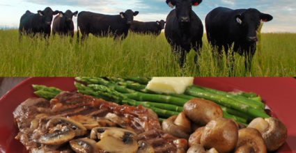 From Pasture to Plate: