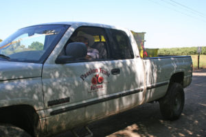 workers in the ranch truck