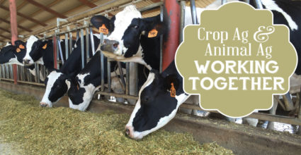 Crop Ag and Animal Ag Working Together